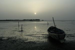 Saloum Islands : Back from the sea shells hunt